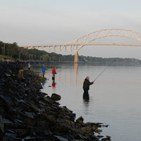 cape cod canal fisherman