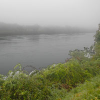 foggy morning at cape cod canal