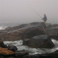 fisherman along gloucester's backshore